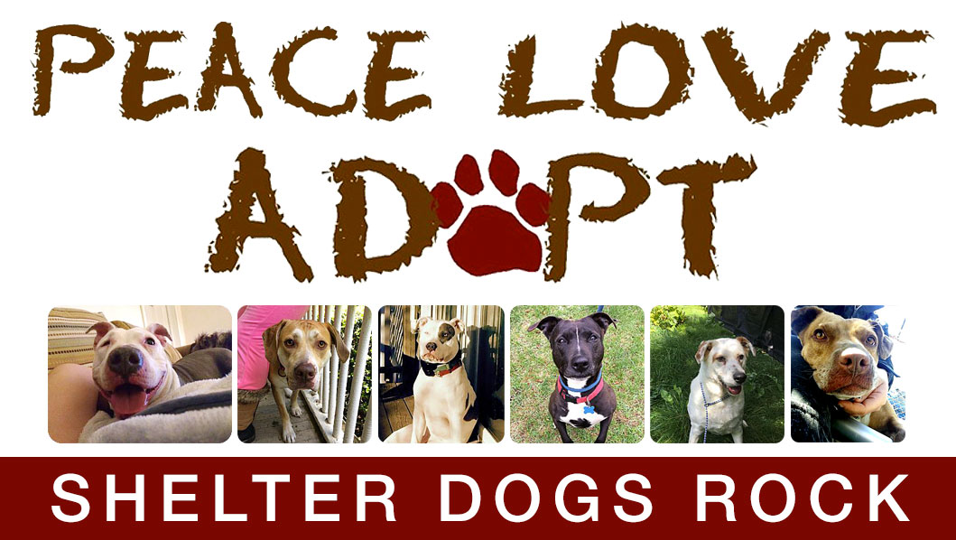 Peace Love Adopt; Shelter Dogs Rock